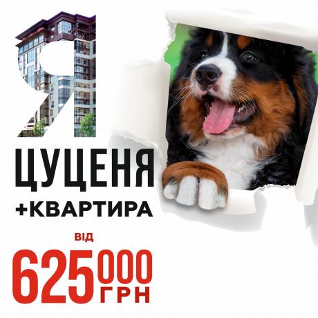 Цуценя та квартира за 625 000грн